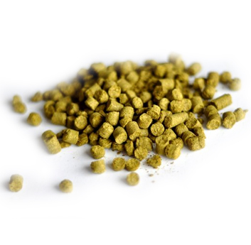 Luppolo GOLDINGS - Pellet 100 gr CROP 2017