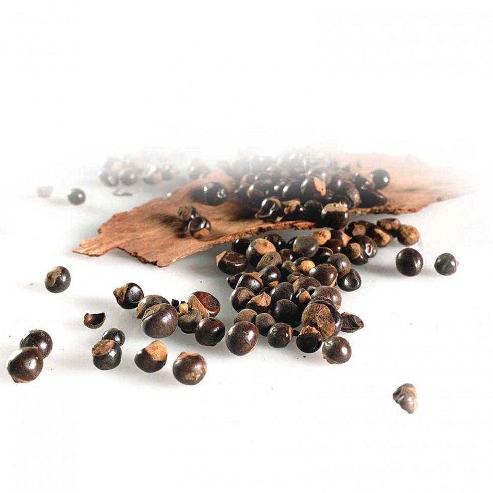 Guaranà - semi essiccati 100gr.