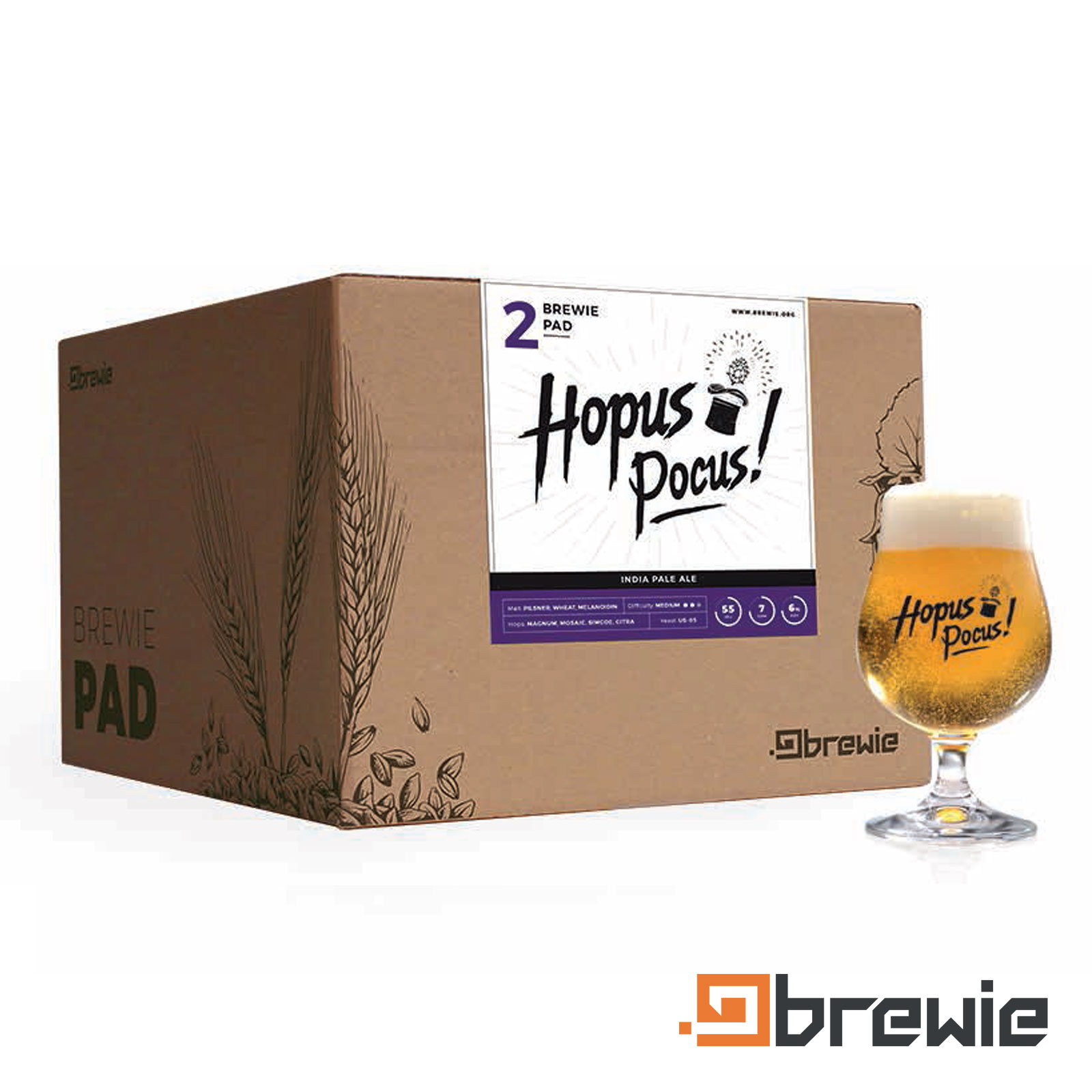 Kit All grain Brewie Hopus Pocus Pale Ale